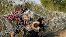 Izbeglice na granici sa Mađarskom