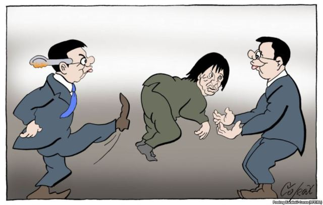 corax gasic